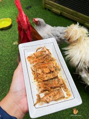 Fun recipe for pet chicken